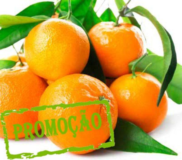 tangerina bio