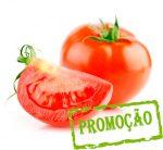 tomate redondo bio
