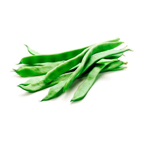 feijao-verde-bio