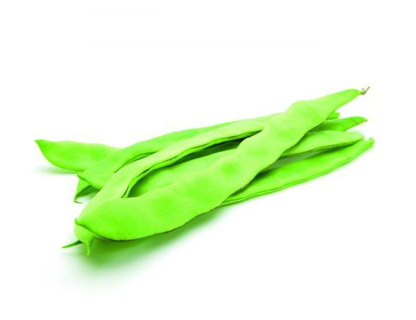 feijão verde biologico