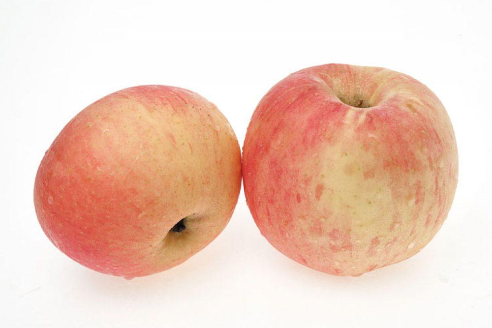 maçã fuji biologica