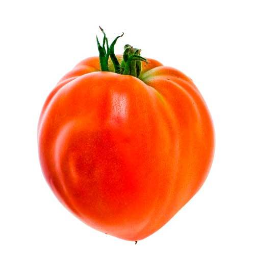 tomate coracao bio